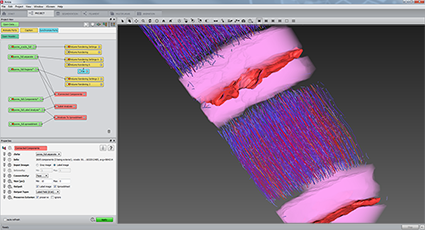 Amira 3d Software For Life Sciences Thermo Fisher Scientific